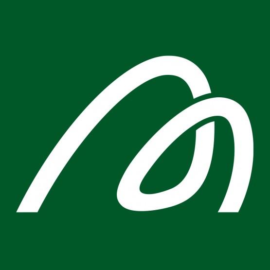 Maptek_M